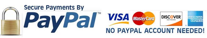 Secure PayPal Check out